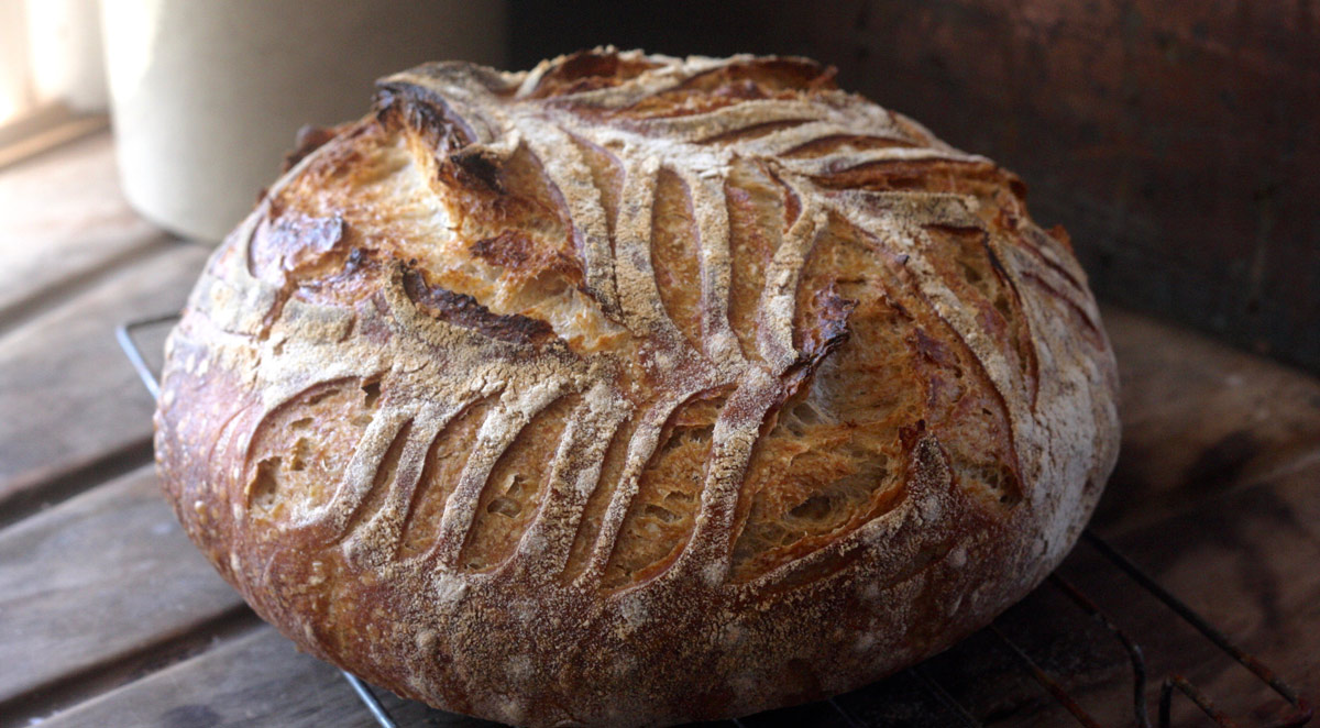 All The Things Sourdough Recipe